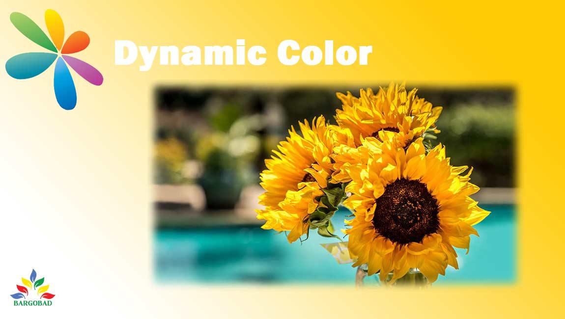 فناوری Dynamic-Color در تلویزیون ال جی LP500