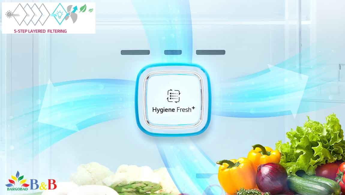 +Hygiene Fresh یخچال J247
