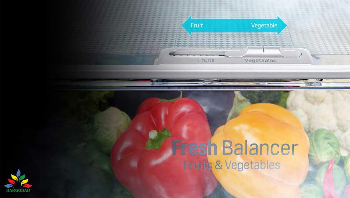 Fresh Balancer یخچال فریزر ال جی L267