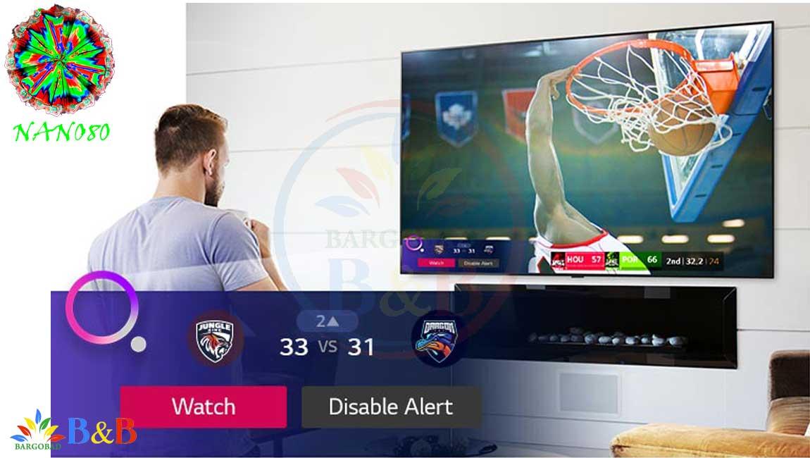 درگاه های ارتباطی در تلویزیون NANO80