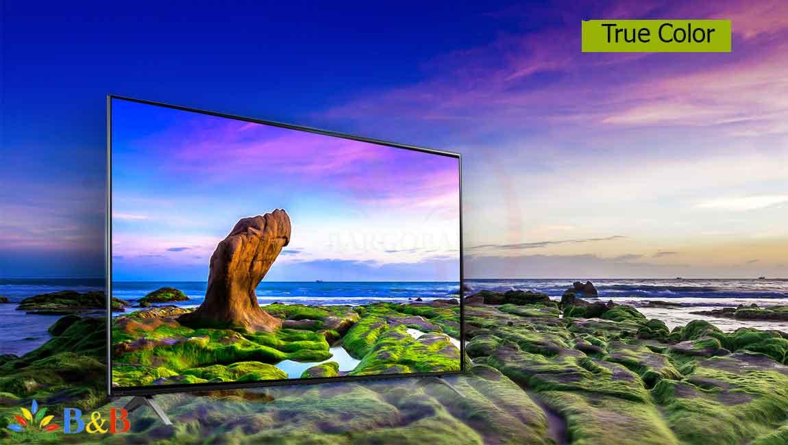 رنگ های واقعی تلویزیون 55 اینچ ال جی NANO90