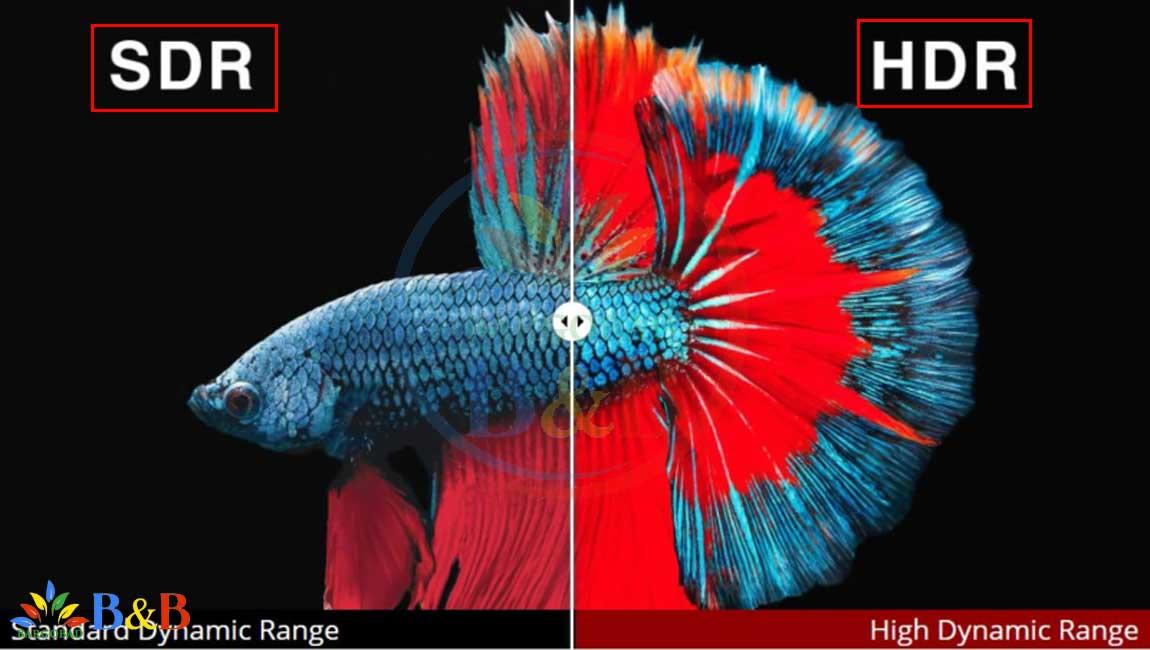 HDR در تلویزیون NANO95