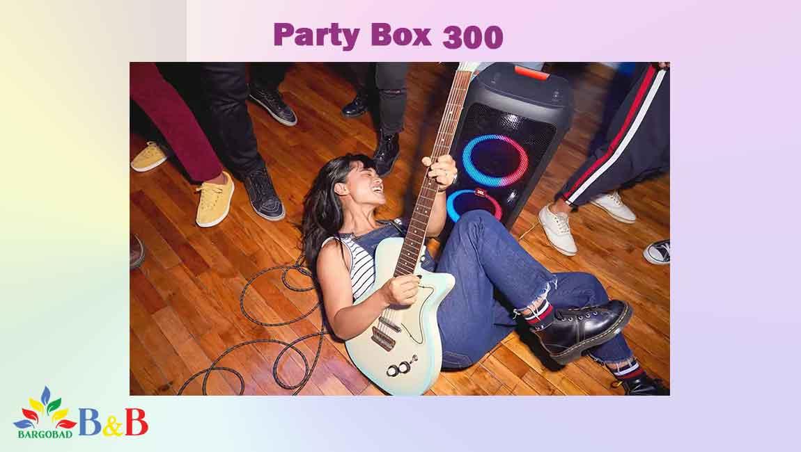 پورت های ارتباطی سیستم صوتی party box 300