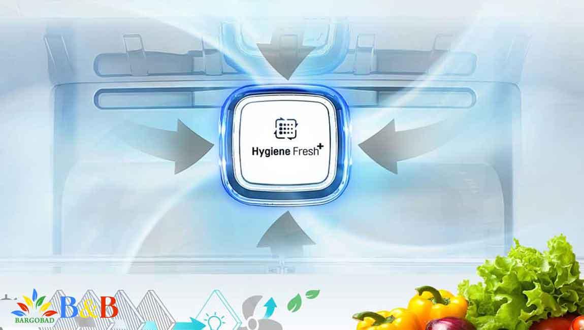 فیلتر بهداشتی در X247