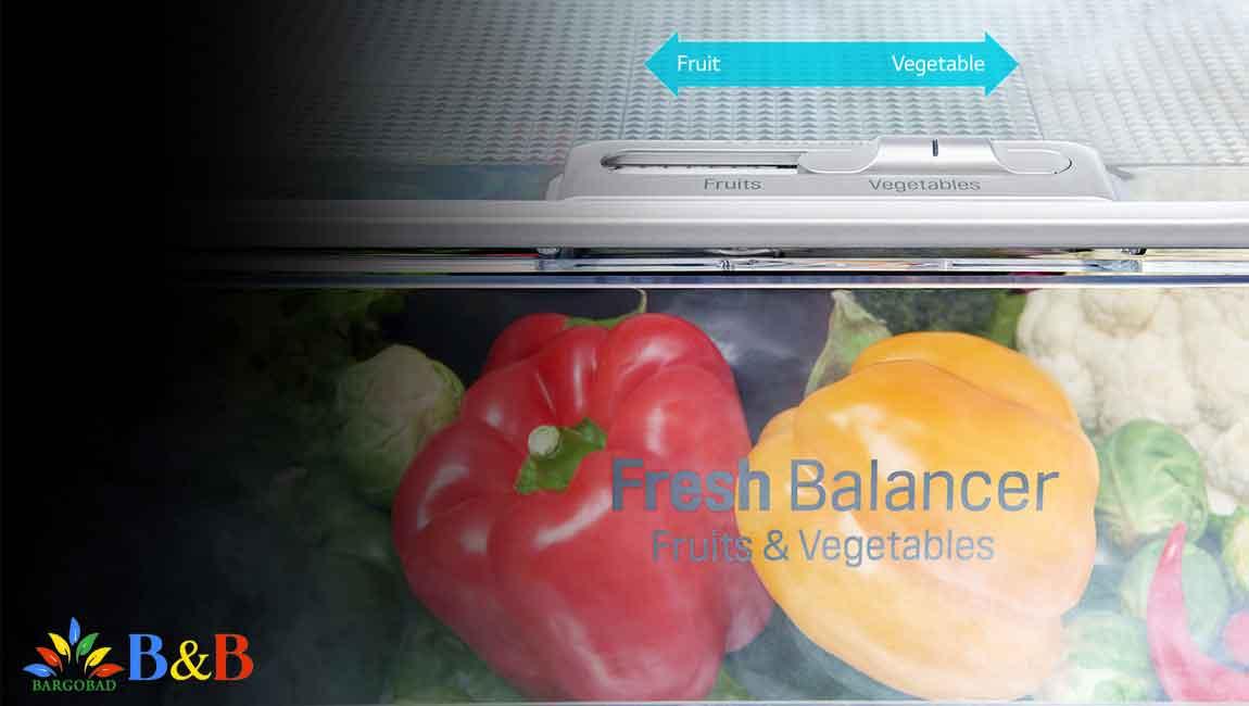 کشو سبزیجات یخچال X257
