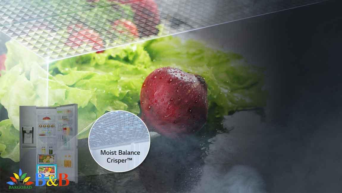 کشو Moist Balance Crisper یخچال X257